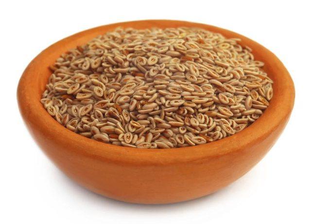 psyllium Seed India